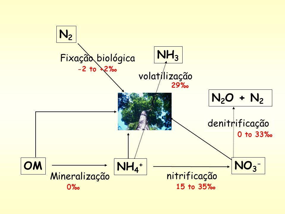 N2 NH3 N2O + N2 OM NO3- NH4+ Fixação biológica volatilização