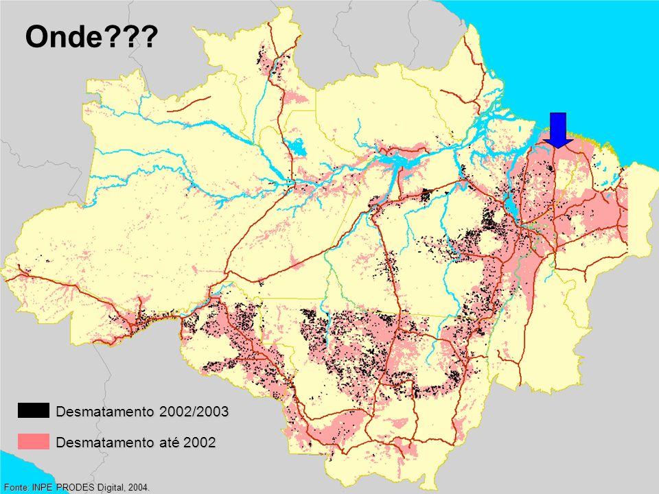 Onde Desmatamento 2002/2003 Desmatamento até 2002