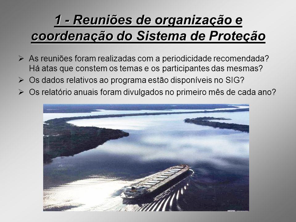 1 - Reuniões de organização e coordenação do Sistema de Proteção