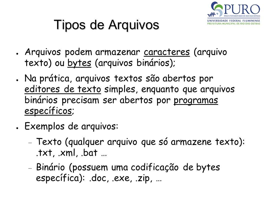 Tipos de Arquivos Arquivos podem armazenar caracteres (arquivo texto) ou bytes (arquivos binários);