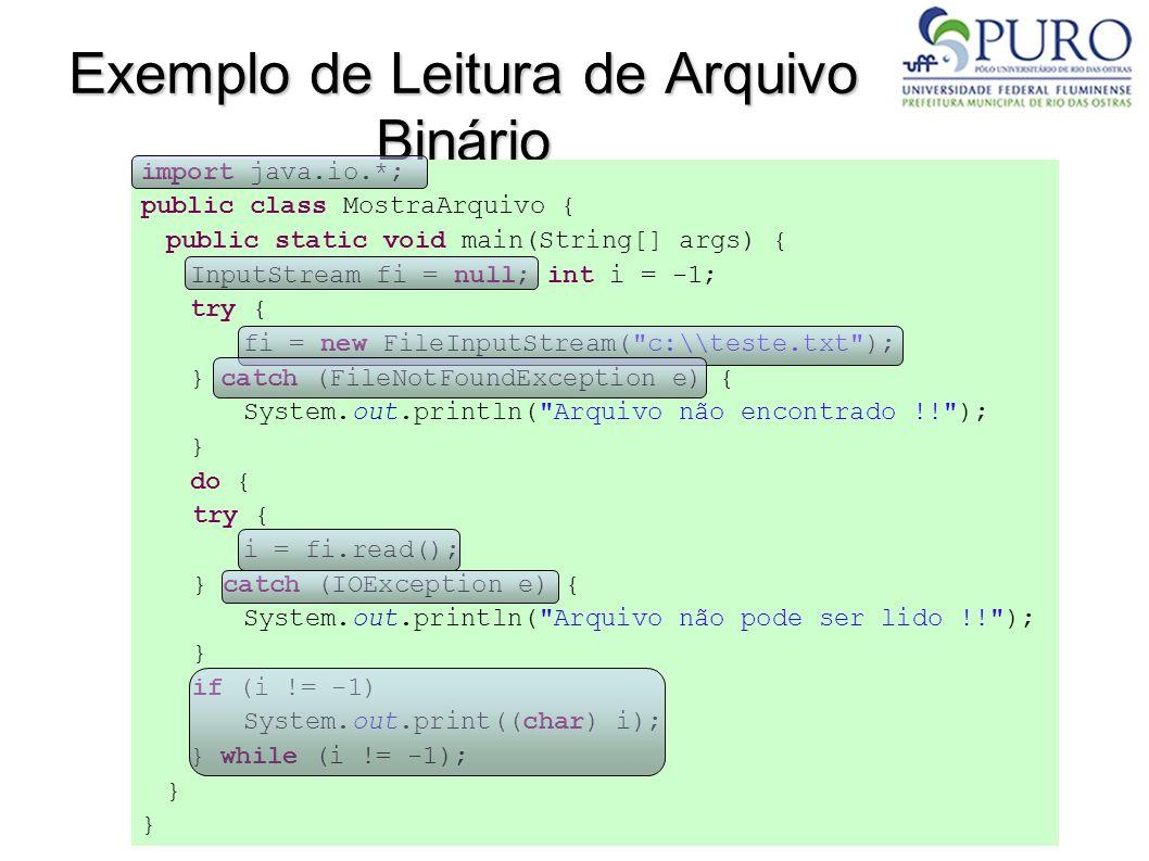 Exemplo de Leitura de Arquivo Binário