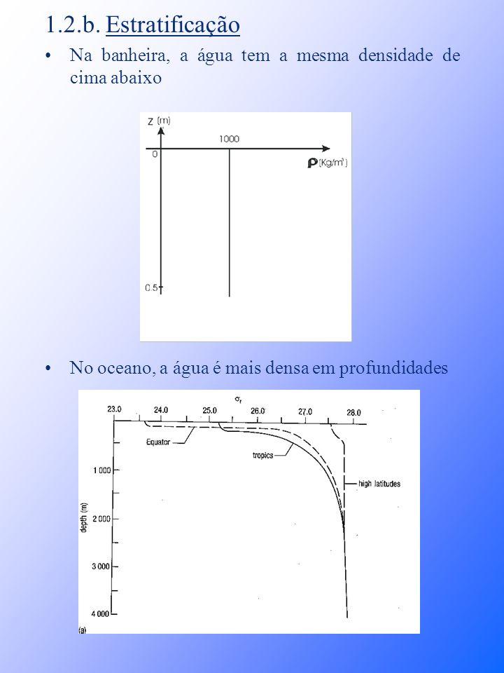 1.2.b. Estratificação Na banheira, a água tem a mesma densidade de cima abaixo.