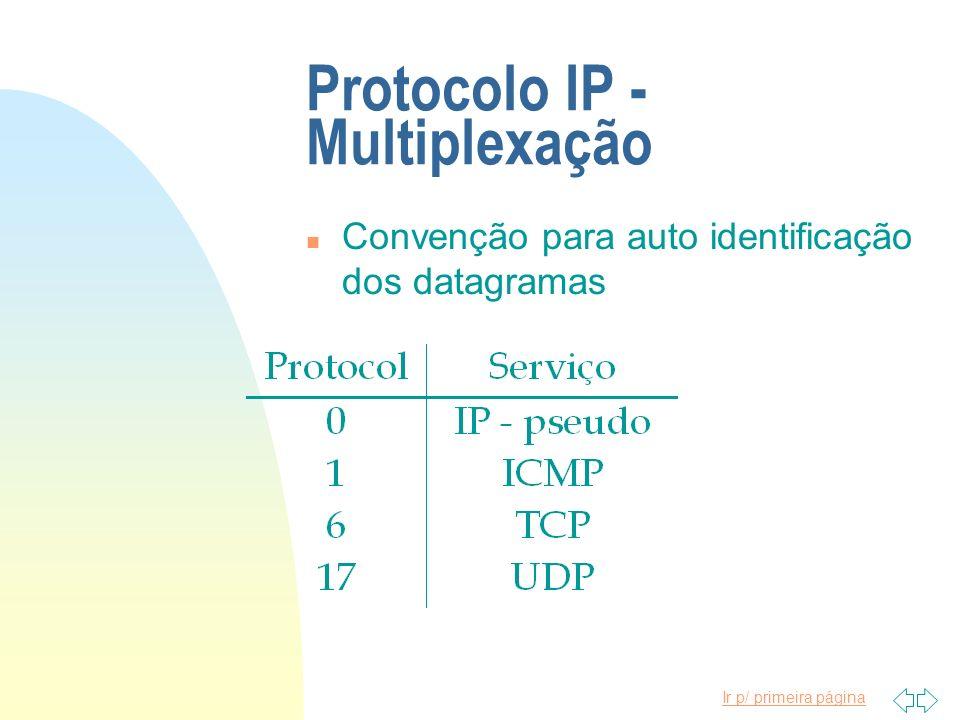 Protocolo IP - Multiplexação