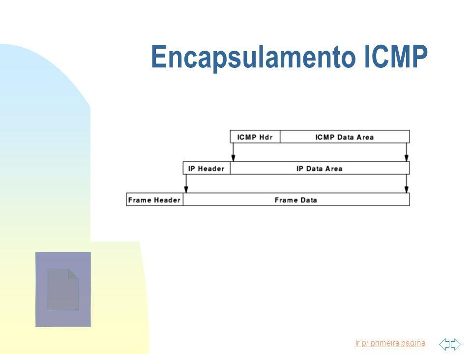 Encapsulamento ICMP