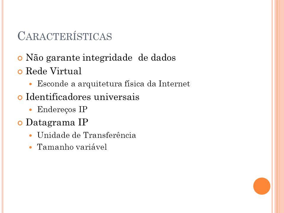 Características Não garante integridade de dados Rede Virtual