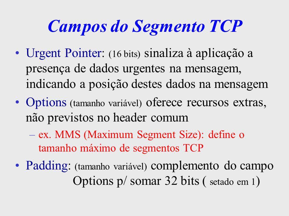 Campos do Segmento TCP