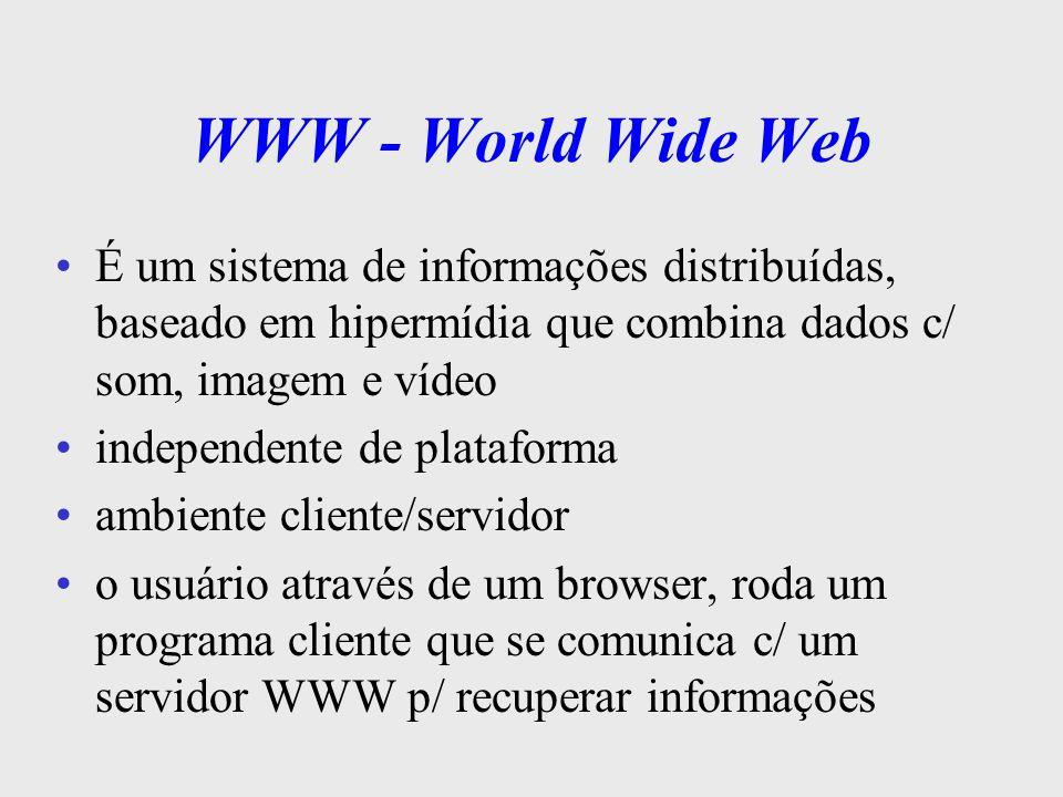 WWW - World Wide Web É um sistema de informações distribuídas, baseado em hipermídia que combina dados c/ som, imagem e vídeo.