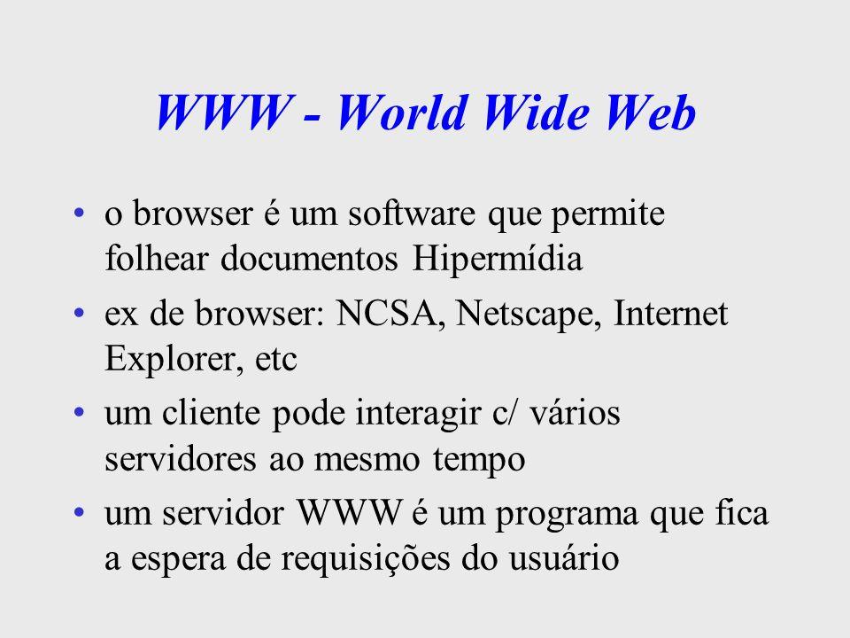 WWW - World Wide Webo browser é um software que permite folhear documentos Hipermídia. ex de browser: NCSA, Netscape, Internet Explorer, etc.