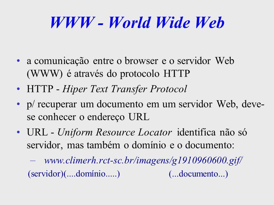 WWW - World Wide Web a comunicação entre o browser e o servidor Web (WWW) é através do protocolo HTTP.