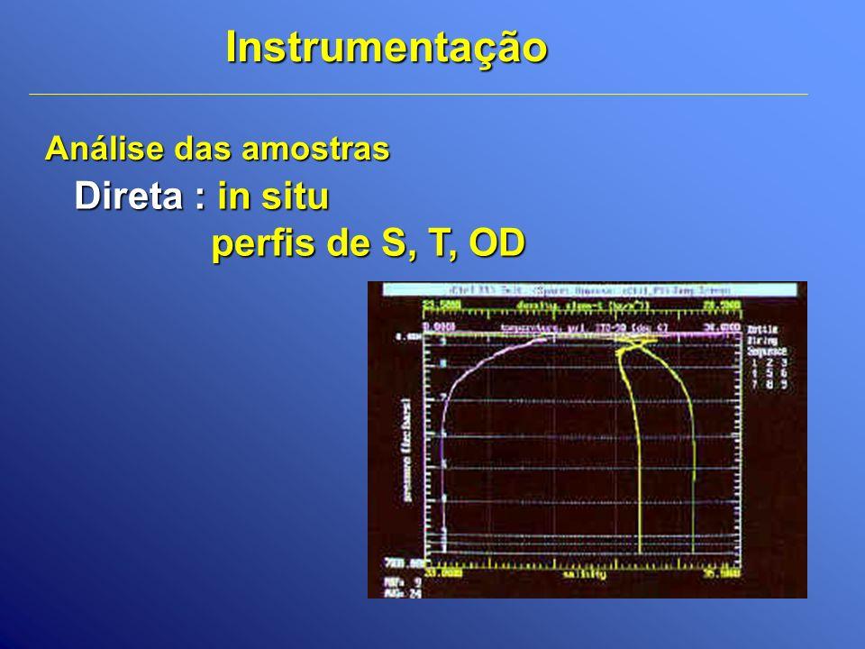 Instrumentação Direta : in situ perfis de S, T, OD