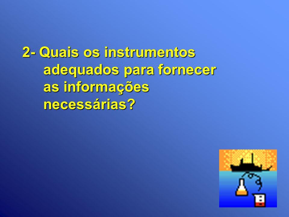 2- Quais os instrumentos adequados para fornecer as informações necessárias