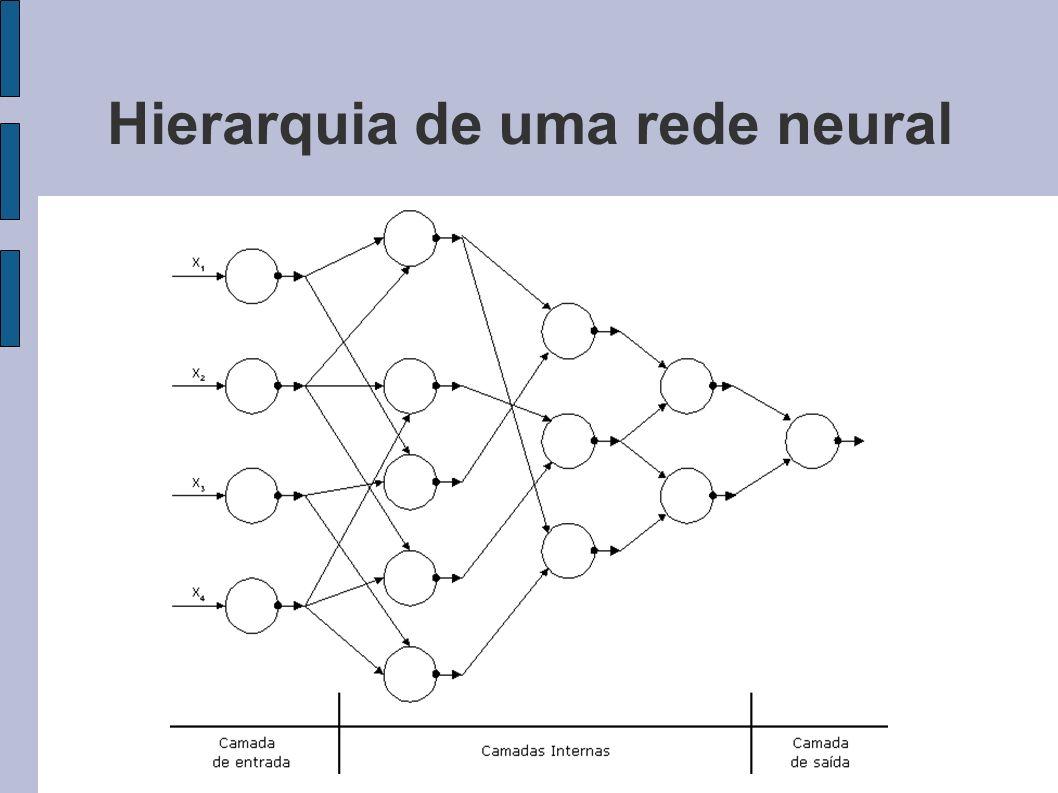 Hierarquia de uma rede neural