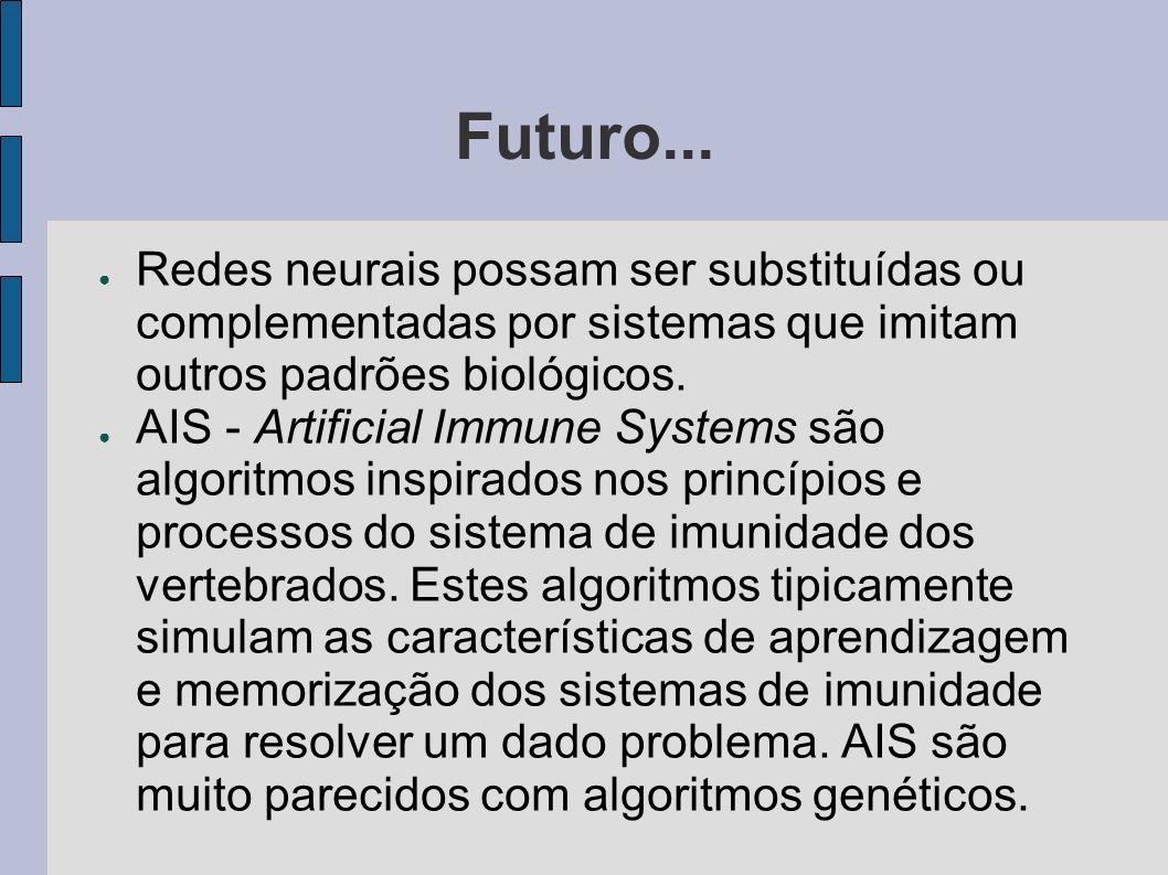 Futuro...Redes neurais possam ser substituídas ou complementadas por sistemas que imitam outros padrões biológicos.