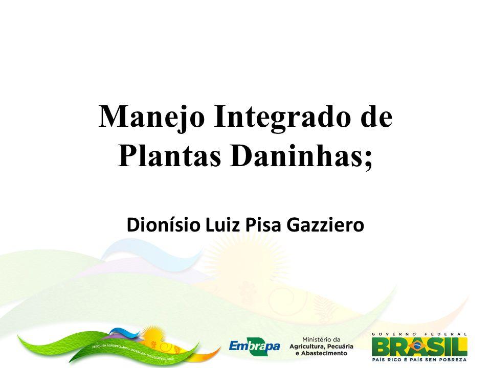 Manejo Integrado de Plantas Daninhas;