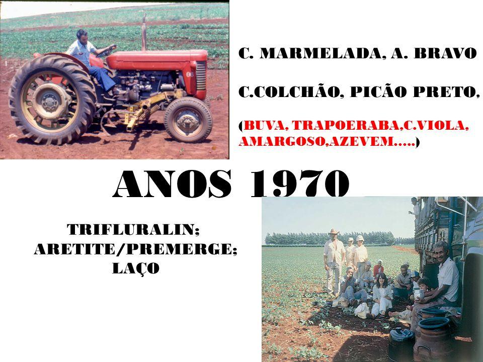 ANOS 1970 C. MARMELADA, A. BRAVO C.COLCHÃO, PICÃO PRETO, TRIFLURALIN;