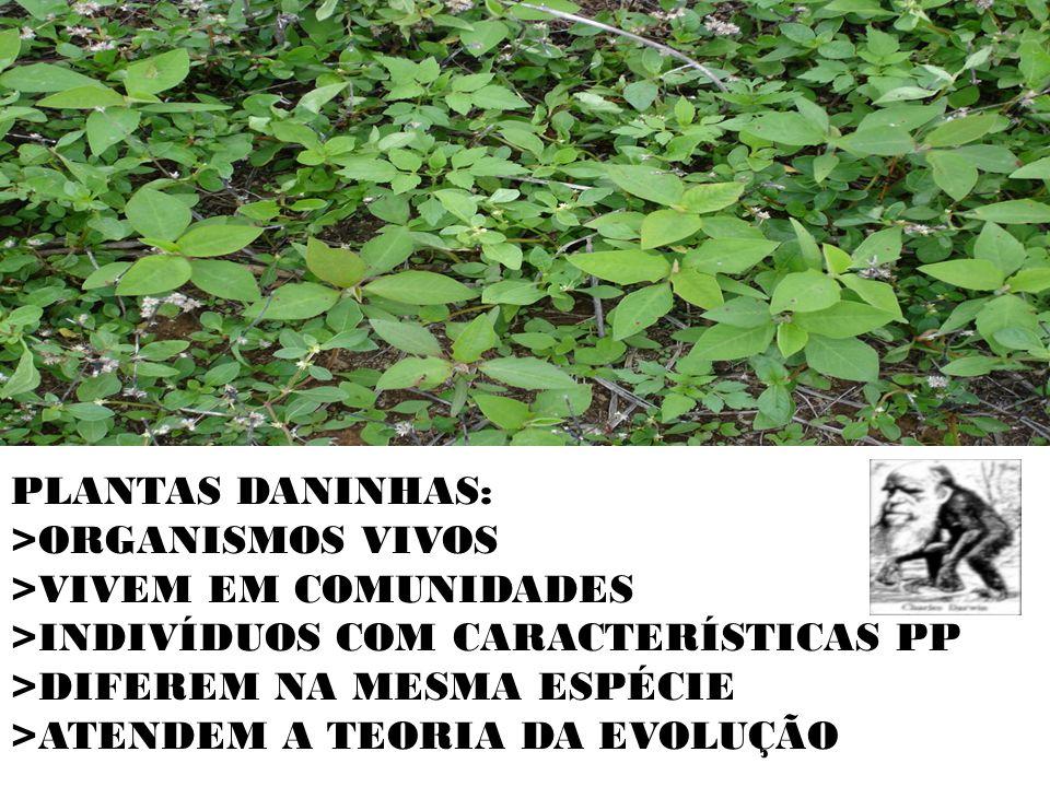 PLANTAS DANINHAS: >ORGANISMOS VIVOS. >VIVEM EM COMUNIDADES. >INDIVÍDUOS COM CARACTERÍSTICAS PP. >DIFEREM NA MESMA ESPÉCIE.