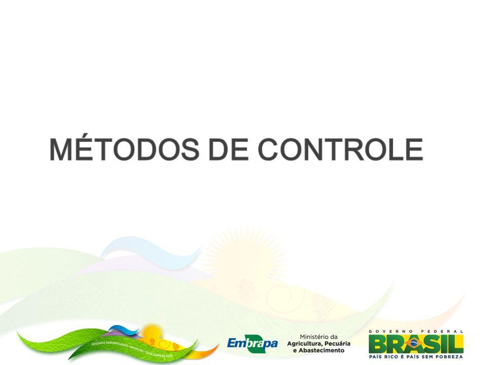 MÉTODOS DE CONTROLE