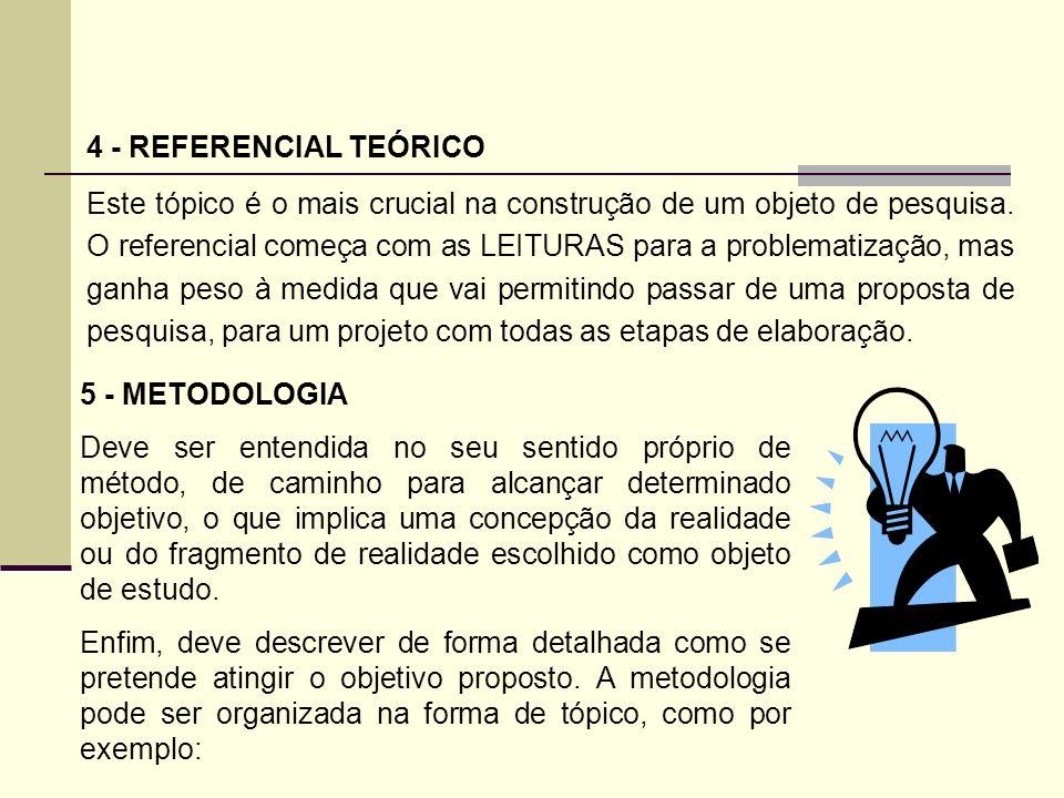 4 - REFERENCIAL TEÓRICO