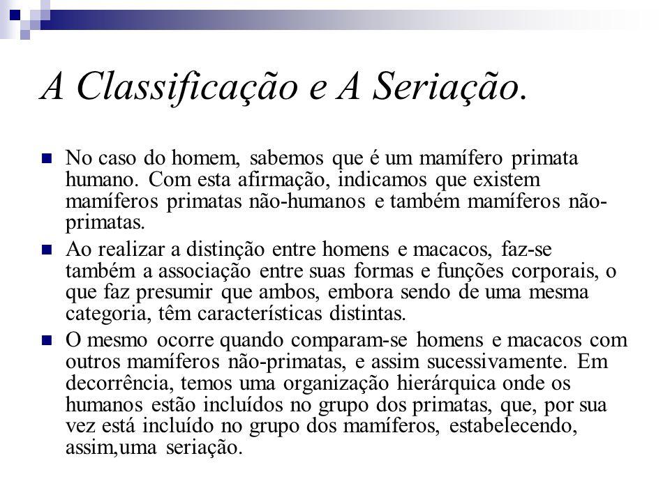 A Classificação e A Seriação.