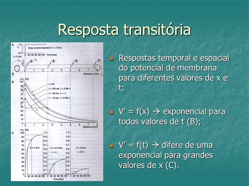 Resposta transitória Respostas temporal e espacial do potencial de membrana para diferentes valores de x e t;