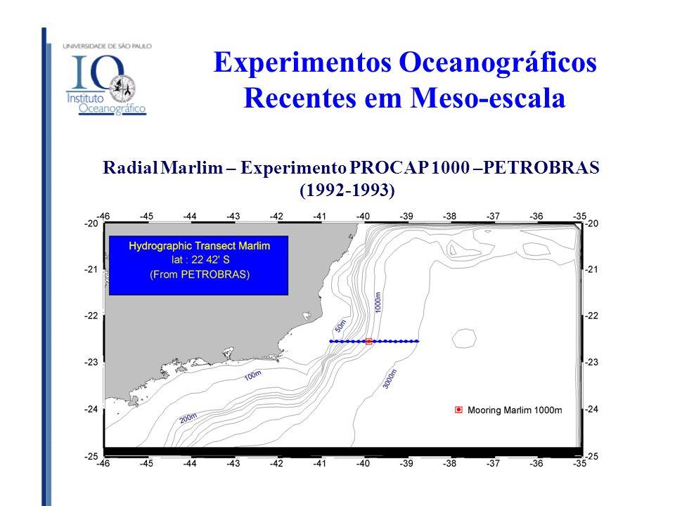 Experimentos Oceanográficos Recentes em Meso-escala