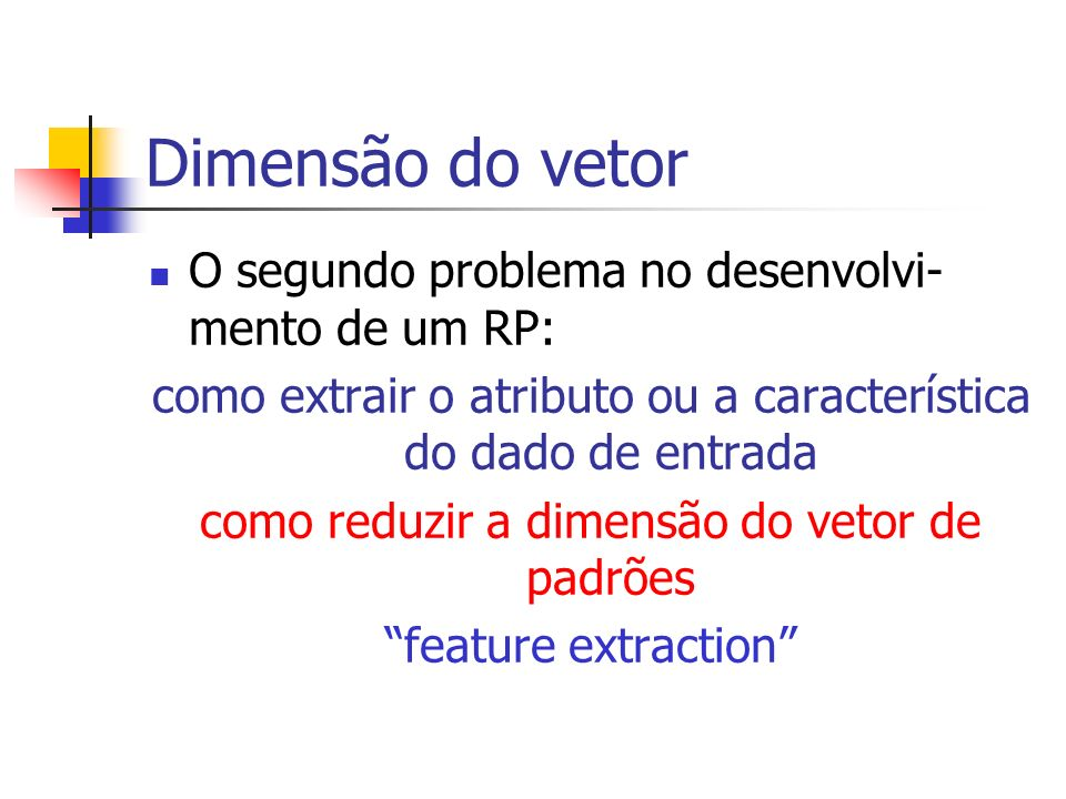Dimensão do vetor O segundo problema no desenvolvi-mento de um RP: