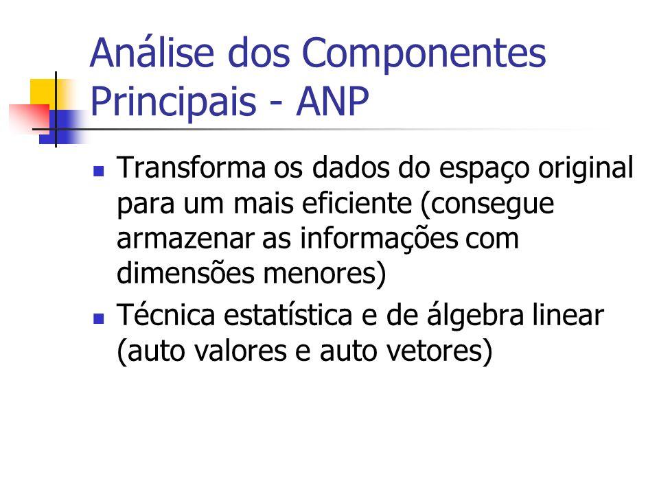 Análise dos Componentes Principais - ANP