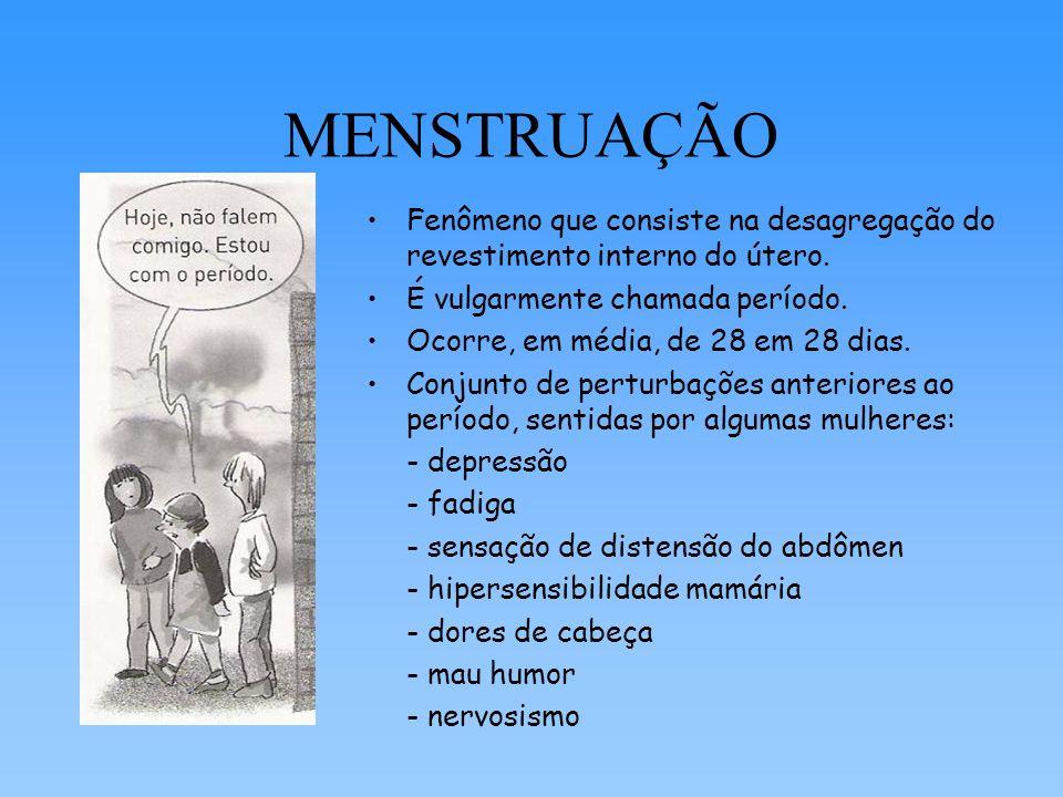 MENSTRUAÇÃO Fenômeno que consiste na desagregação do revestimento interno do útero. É vulgarmente chamada período.