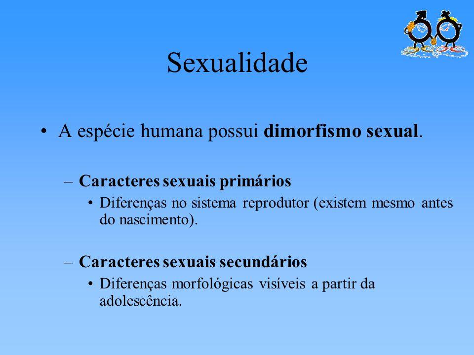 Sexualidade A espécie humana possui dimorfismo sexual.