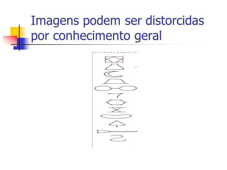 Imagens podem ser distorcidas por conhecimento geral