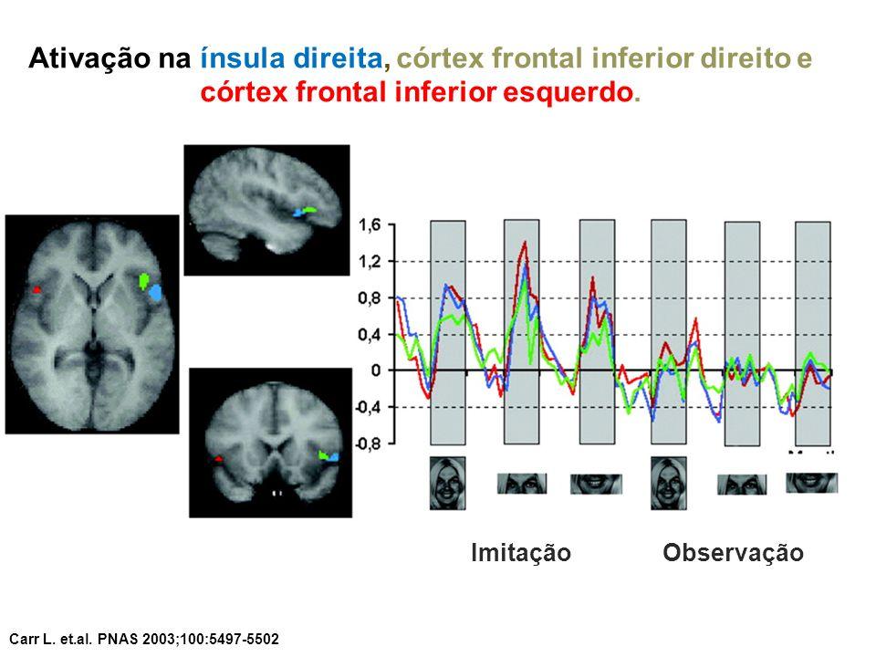 Ativação na ínsula direita, córtex frontal inferior direito e