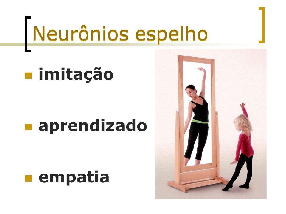 Neurônios espelho imitação aprendizado empatia