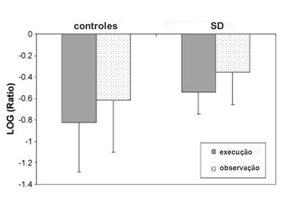 controles SD execução observação
