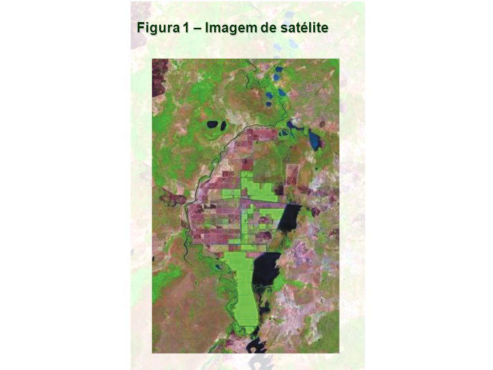 Figura 1 – Imagem de satélite