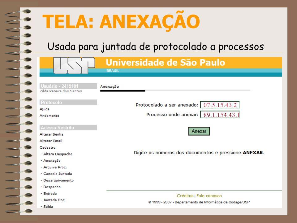 TELA: ANEXAÇÃO Usada para juntada de protocolado a processos