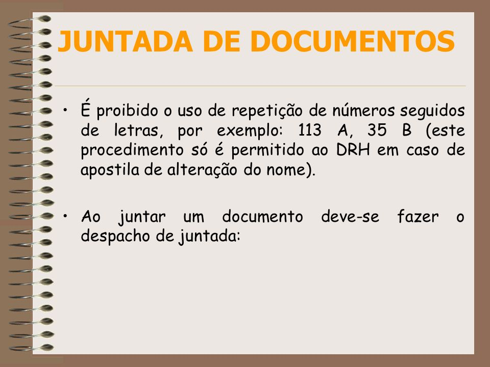 JUNTADA DE DOCUMENTOS