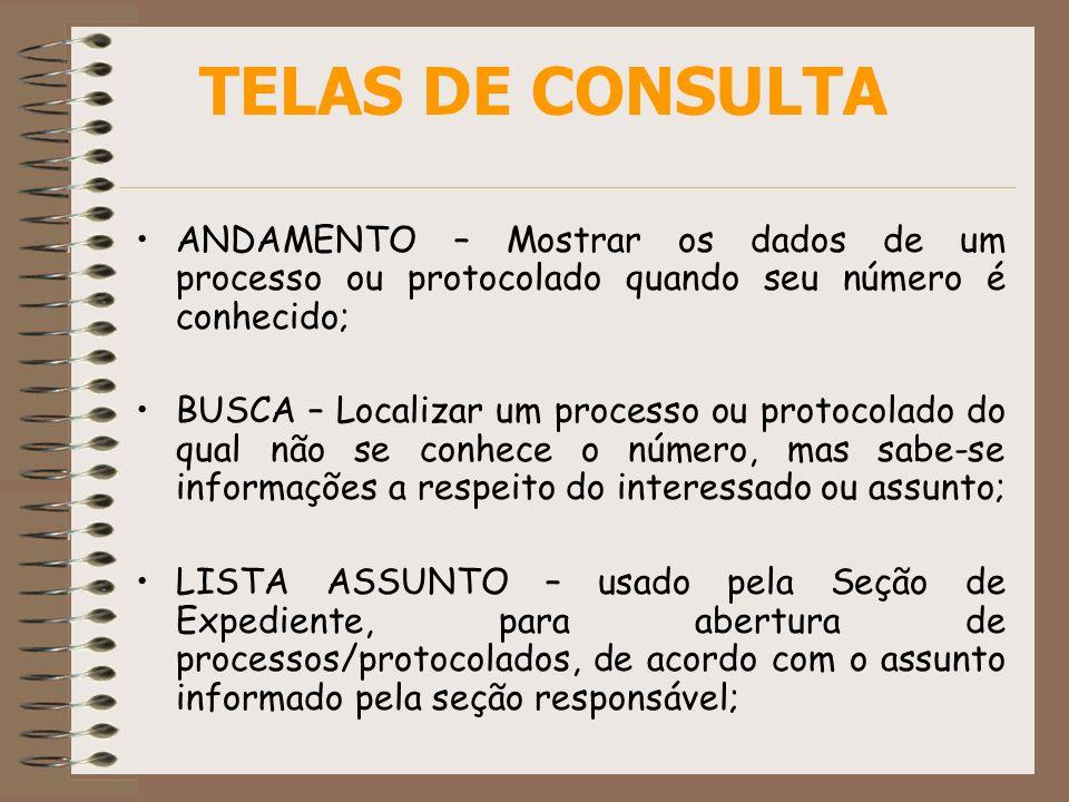 TELAS DE CONSULTA ANDAMENTO – Mostrar os dados de um processo ou protocolado quando seu número é conhecido;