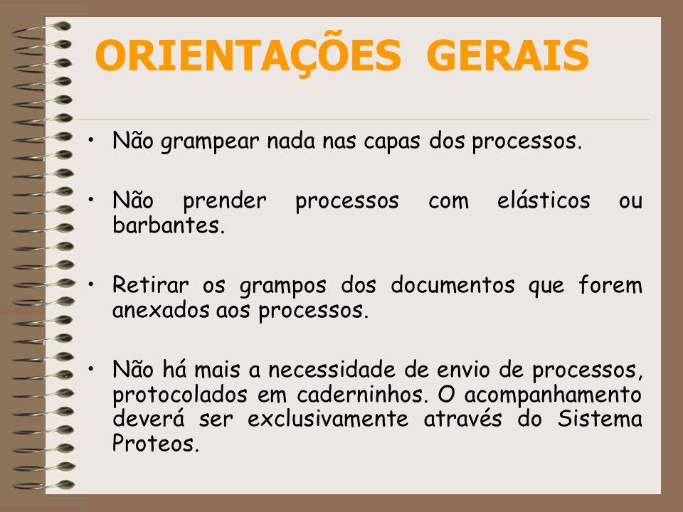 ORIENTAÇÕES GERAIS Não grampear nada nas capas dos processos.