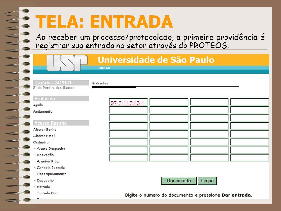 TELA: ENTRADAAo receber um processo/protocolado, a primeira providência é registrar sua entrada no setor através do PROTEOS.