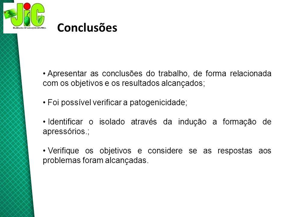 ConclusõesApresentar as conclusões do trabalho, de forma relacionada com os objetivos e os resultados alcançados;