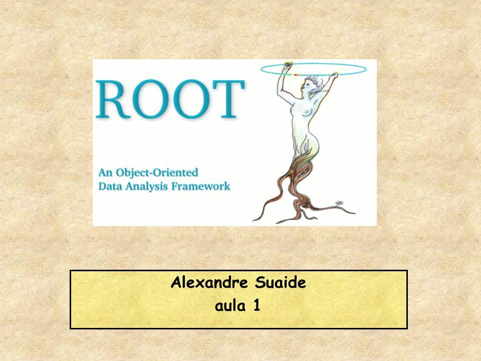 Alexandre Suaide aula 1