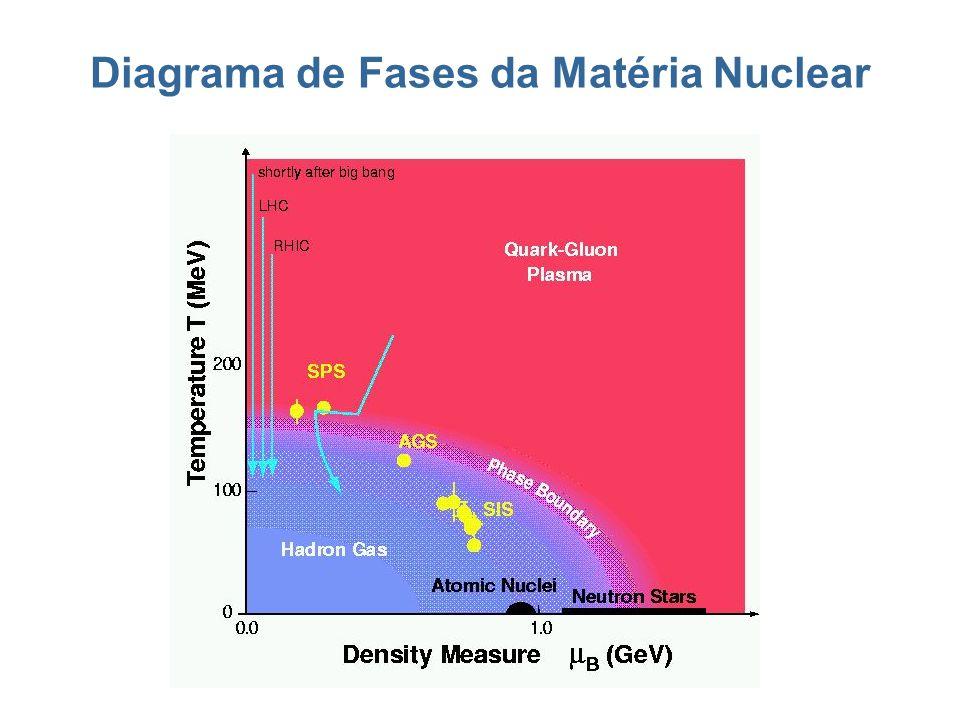Diagrama de Fases da Matéria Nuclear
