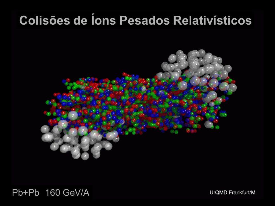 Colisões de Íons Pesados Relativísticos