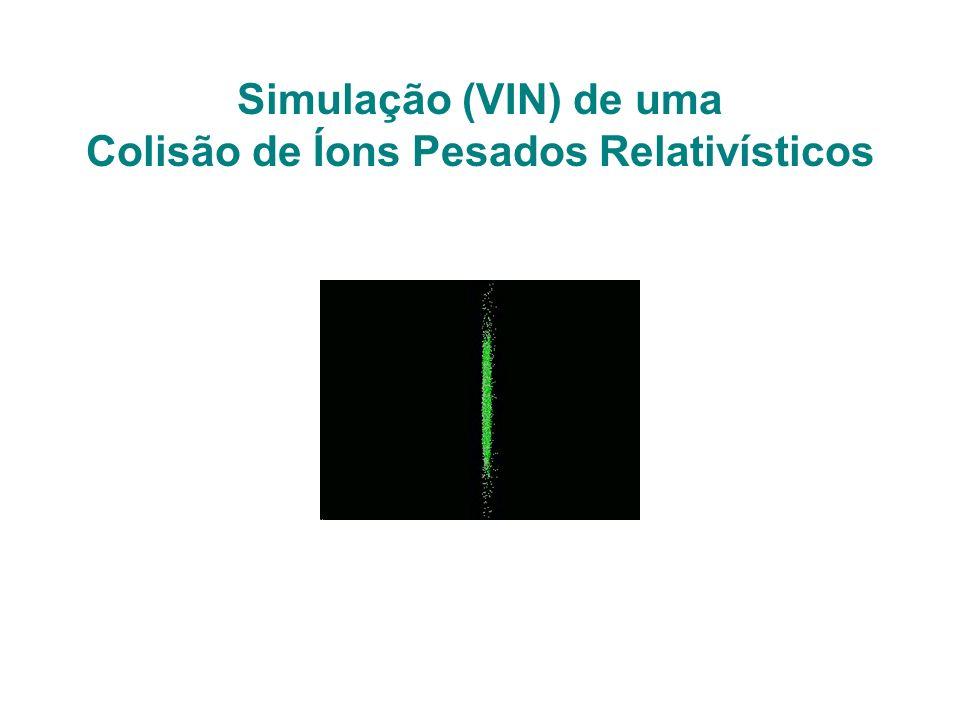 Simulação (VIN) de uma Colisão de Íons Pesados Relativísticos