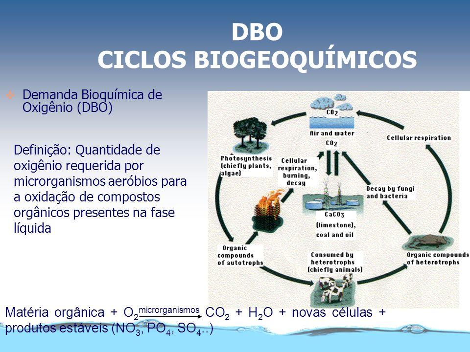 DBO CICLOS BIOGEOQUÍMICOS