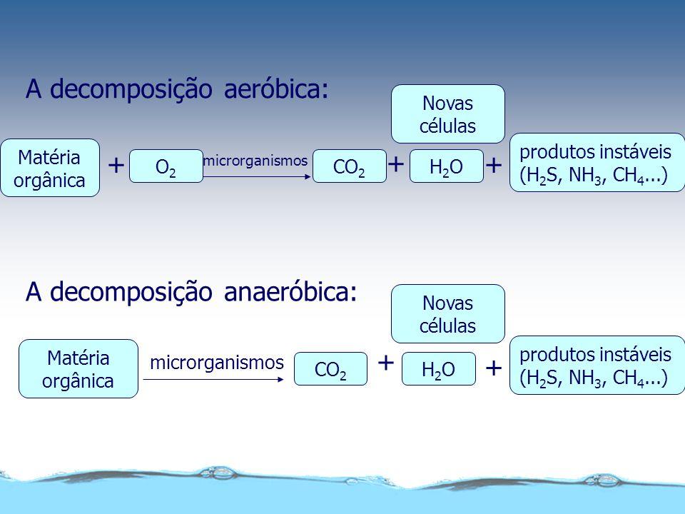 A decomposição aeróbica: