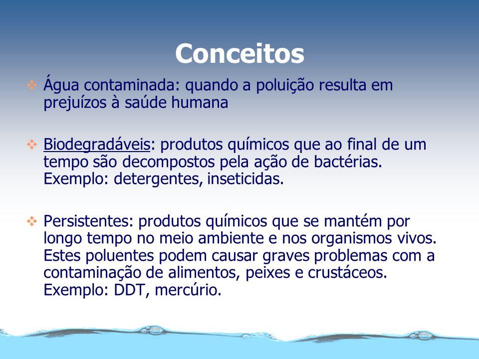 Conceitos Água contaminada: quando a poluição resulta em prejuízos à saúde humana.