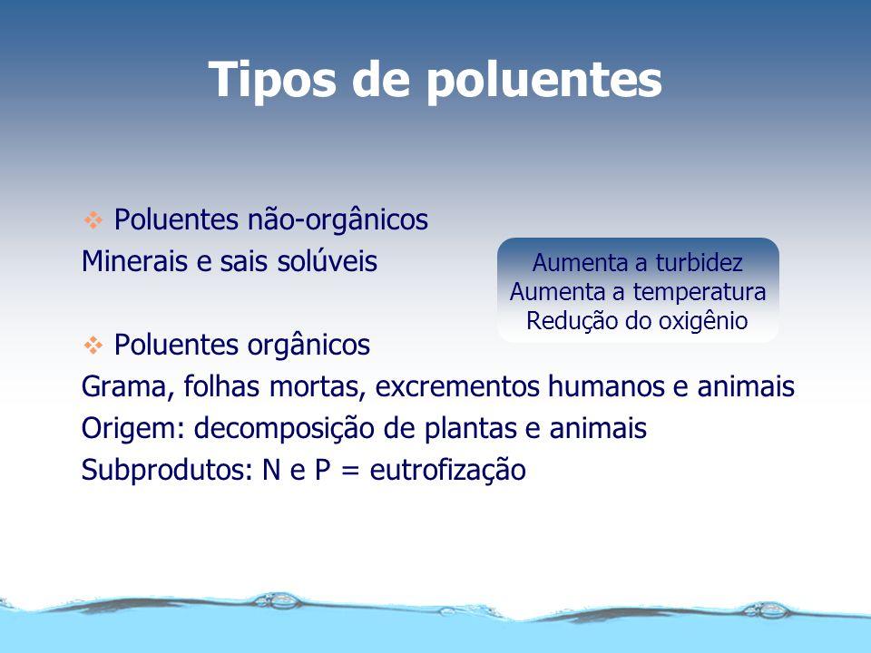 Tipos de poluentes Poluentes não-orgânicos Minerais e sais solúveis