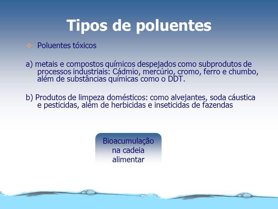 Bioacumulação na cadeia alimentar