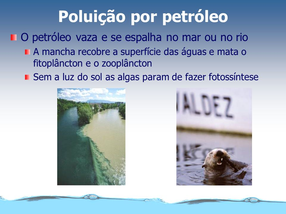 Poluição por petróleo O petróleo vaza e se espalha no mar ou no rio